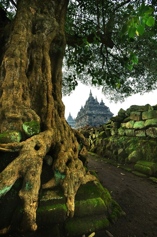 Travel Asian Candi Plaosan or the Twin Temples  |  Yogyakarta, Indonesia (Southeast Asia)