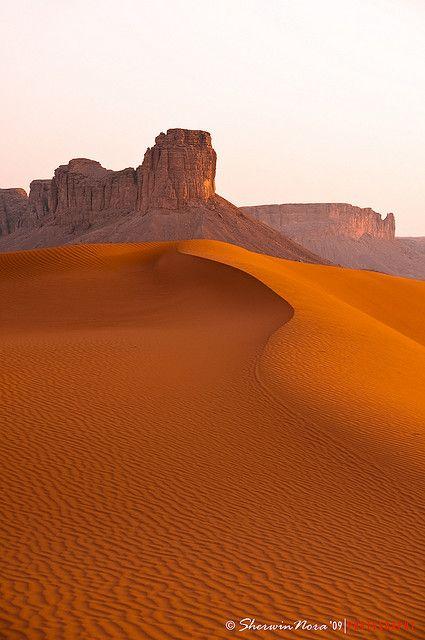 The red sands. Saudi Arabia