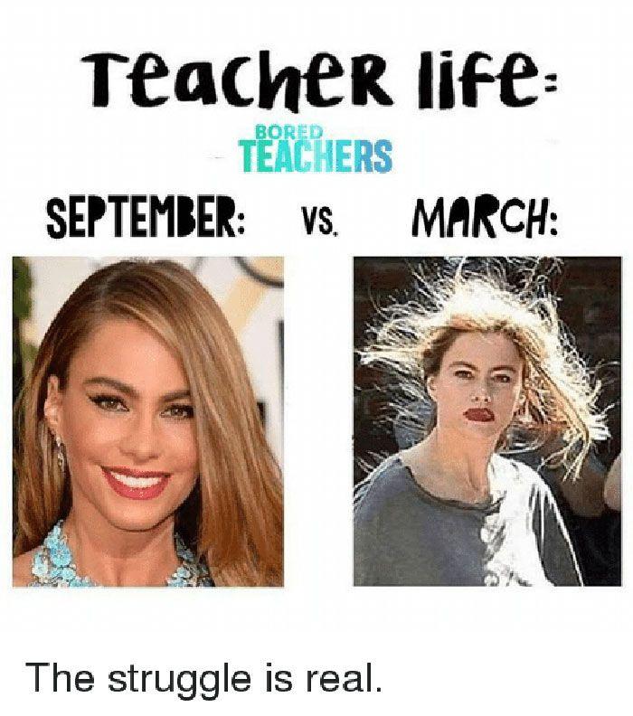 Funny Teachers Teacher Memes Teacher Memes Funny Teaching Memes