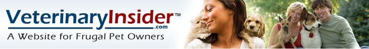 Dog Odor Control Tips