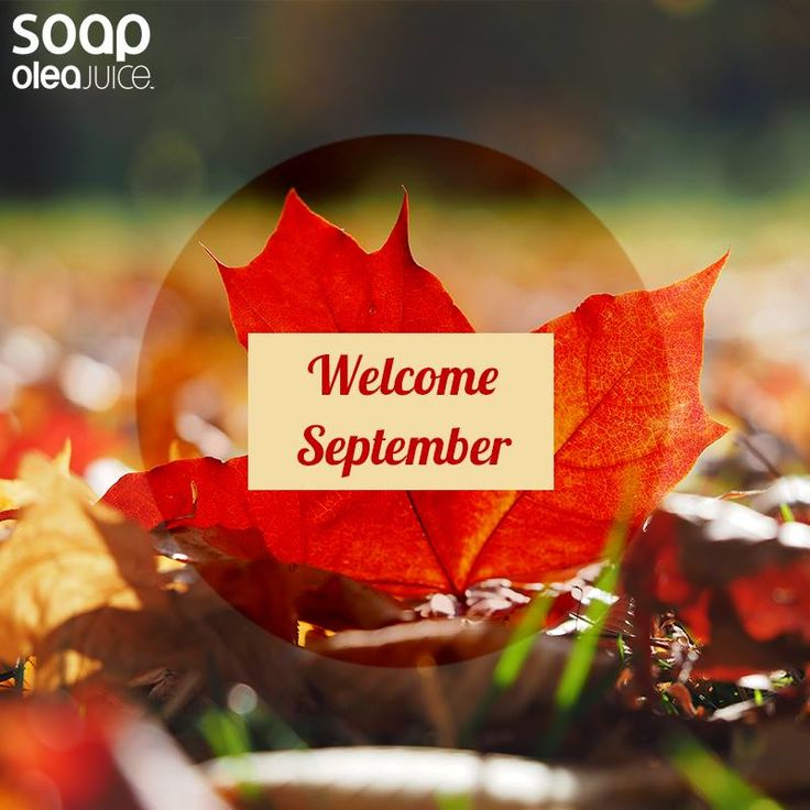 #welcome #september #olea #juice #soap #artisanal soaps