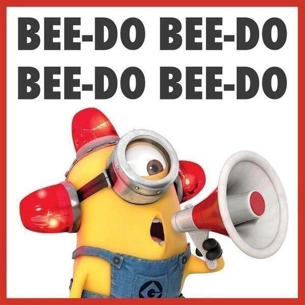minion bee do