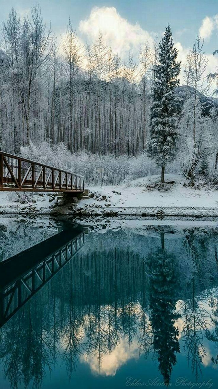 Alaskan winter mirror view.
