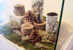 Logs Display, Heart Norwegian, Nature Jewelry Display, Jewelry Displays, Jewelry Store Window, Windows Display, Norwegian Wood, Display Ideas, ...