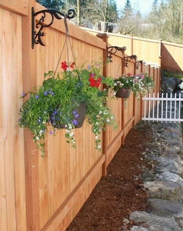 Idea by Emily Maldonado on Gardening Creations | Privacy ...