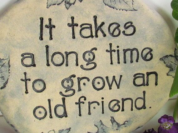 Best 25 Best Friend Sayings Ideas On Pinterest: Best 25+ Old Friends Ideas On Pinterest