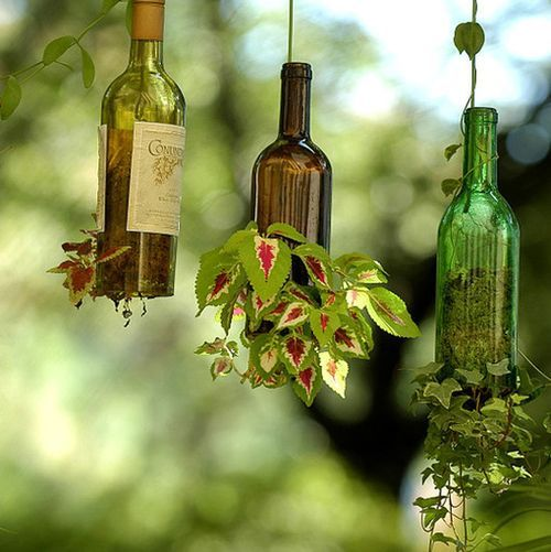 Macetas colgantes en botellas de vidrio. Hanging flowerpots in glass bottles DIY recicling Ideas