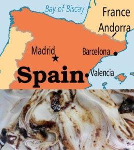 ¿Dónde comerte un buen helado si estás en Madrid, Barcelona o Valencia? http://heladocasero.com/buen-helado-en-madrid-barcelona-valencia/