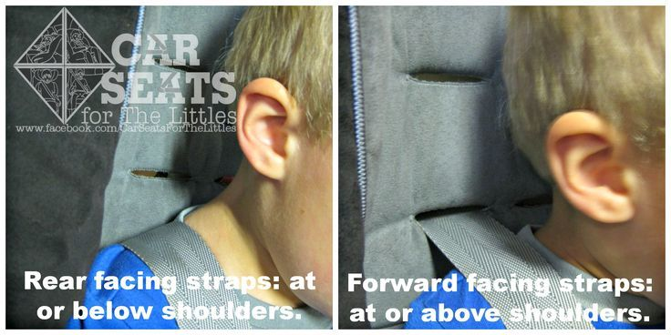 On A Rear Facing Car Seat Harness Straps Should Be Positioned At Or Below The ShouldersOn Forward