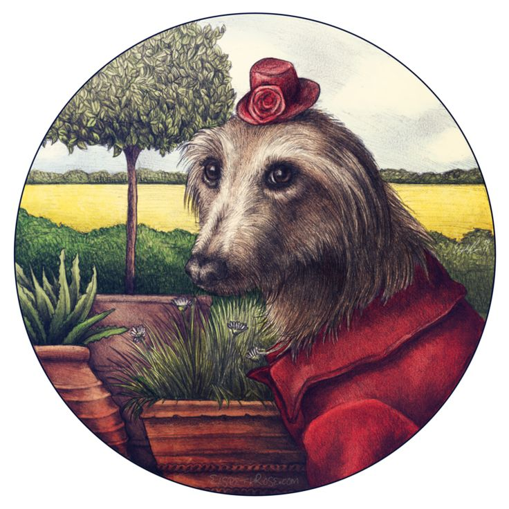 Lady Isabella by ElspethRose.com lurcher dog sighthound art digital drawing painting rescue saluki whippet greyhound staghound