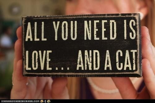 True so true... Or 4: Crazy Cats, I Love Cats, Truth, Thought, Dog, Cat Lady