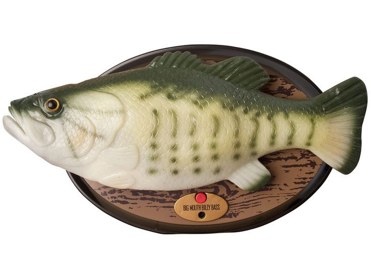 25 best ideas about singing fish on pinterest circle for Big mouth billy bass singing fish