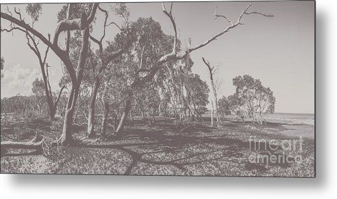 Season Metal Print featuring the photograph Wetlands Of Old by Jorgo Photography - Wall Art Gallery