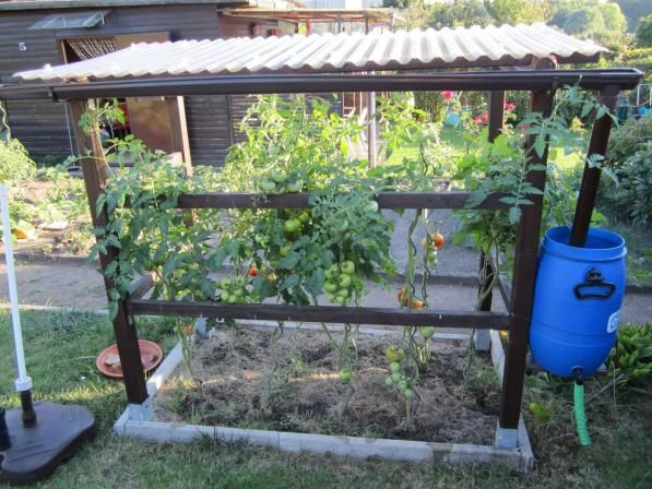 Tomatenhaus - OBI Selbstgemacht! Blog. Selbstbauanleitung für jedermann.