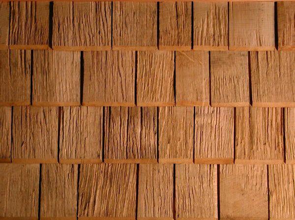 Theo Ott drewniane gonty - lasy iglaste, drewno, drzewa iglaste, twardziel, gont parzenia, półpasiec modrzew, modrzew, świerk, buk, pokrycia dachowe, drzewo liściaste, półpasiec dębowe, półpasiec, gnić grzyby, czerwony cedr, dąb, Alaska cedr, dekoracyjne półpasiec, Pilzwidrigkeit