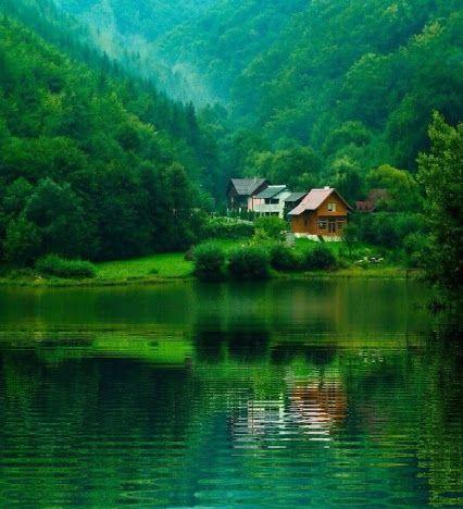 Nature Photography - コミュニティ - Google+