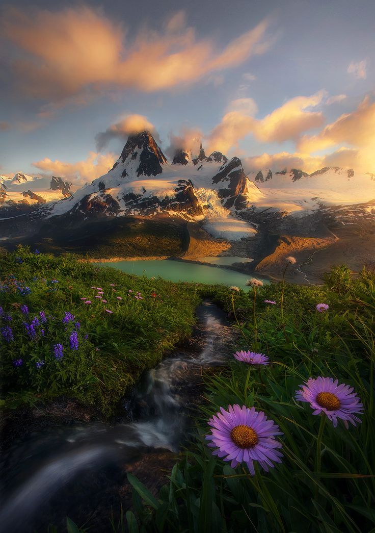 The fourth image in a long and diverse series of shots from places I visited this summer in the wilds of British Columbia and Alaska while heli-backpacking on multiple trips. You might call this a 'sister' image to the last which I posted here - wildflowers, cascades, enormous glacial mountains, turquoise lakes, etc, but it is from a different place. There are so many places up here, fifteen hundred miles of non-stop mountains - the most beautiful and undiscovered on the entire contin...
