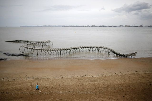 """A boy runs in front of the """"Serpent d'ocean"""" (Ocean snake) in Saint-Brevin-les-Pins, western France, April 24, 2014. Ocean Serpent is a  giant aluminium sea serpent skeleton by the Chinese artist Huang Yong Ping. (Photo by Stephane Mahe/Reuters)"""