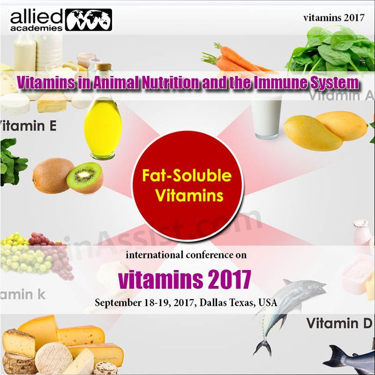 Vitamins in The Animal Nutrition And The Immune System. Commonly a vitamin premix for stallions contains vitamins A, D, E, K,# thiamin, riboflavin, niacin, B6, pantothenic corrosive, biotin, #folacin, B12 and choline.