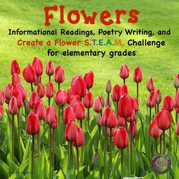 This versatile resource is good for brightening someone's day on many occasions; May Day, Mother's Day,  end of the year thank you, etc.  You can also just have the students make the flowers and write poems about spring for your class bulletin board.  Your students will have lots of fun with this STEM challenge.
