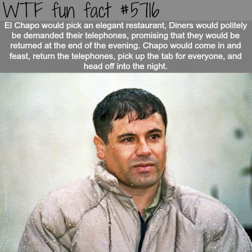 El Chapo - WTF fun facts