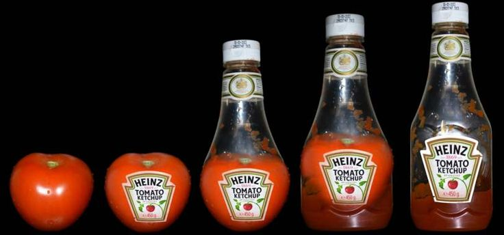 The Ketchup Narrative - Tomato to Ketchup - B.K20