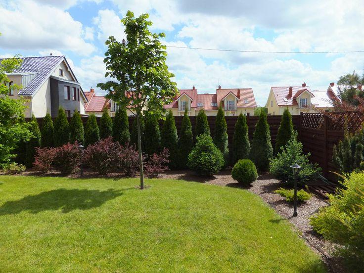 Niewielki ogród na Wawrze.