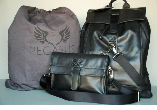 Pegasus   Indiegogo