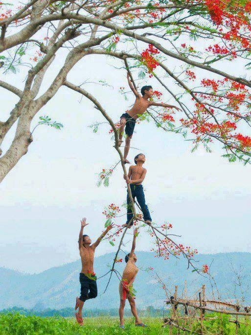 Being a daredevil and climbing trees with your buddies....