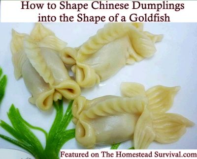 94 best crazy dumplings images on pinterest asian food recipes the homestead survival how to shape jiaozi chinese dumplings into the shape of a goldfish forumfinder Gallery