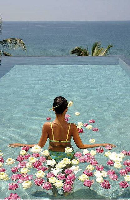 ahhhh: The View, Brain Simply, Luxury Travel, The Brain, Simply Believe, Inspiration Quotes, Infinity Pools, Flower, My Style