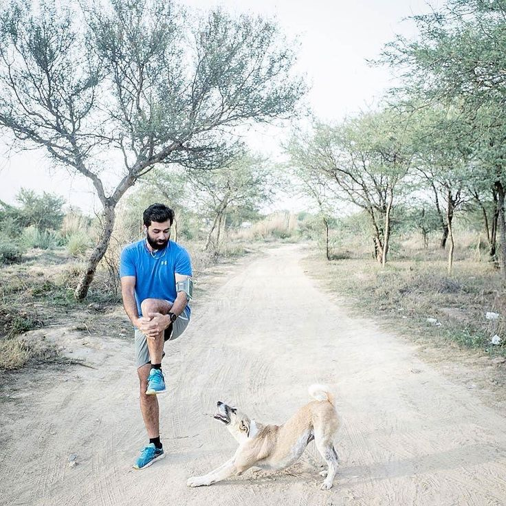 Photo by @steelcyclist  Today's pre run stretching - even Kramer knows now to limber up before a 5k in such hot weather. #running #dog #india #delhi #newdelhi #delhirunners #run #exercize #dog #indiandogs #nikerunning #nike #soucony #trailrunning #trailrun #stretching #stretch #health #fitness #runner #runnersofinstagram #instarun #wod #workout #underarmour #indiaphotoproject