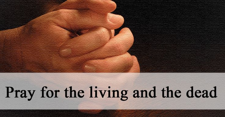 26 best Jubilee of Mercy Resources images on Pinterest ...