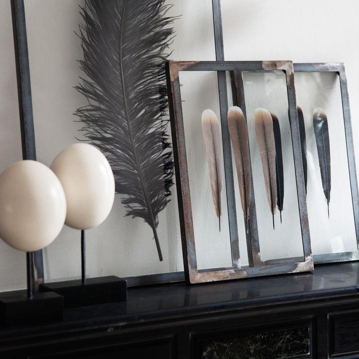 Struisvogeleieren en veren van een fazant voor in huis - Roomed