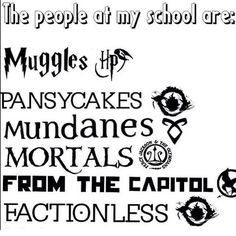 books: Harry Potter, Divergent, The Mortal Instruments, Percy Jackson, The Hunger Games, and Divergent again.