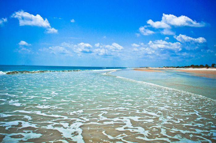 16 Out Of This World Hiking Spots In Florida | 4. Little Talbot Island