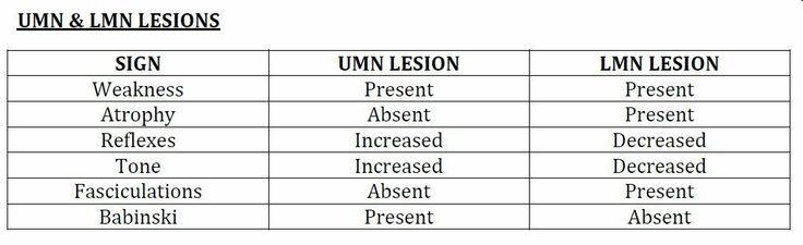Upper vs lower motor neuron disease med school for Upper motor neuron syndrome symptoms