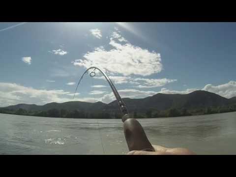 Pêche du silure au leurre du bord #6-GoPro HD-2017