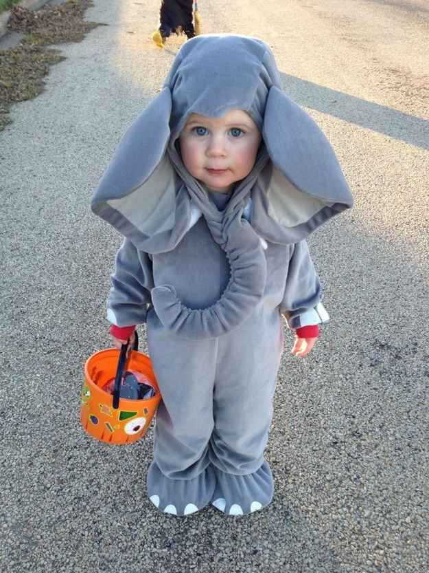 The world's smallest elephant.   26 Halloween Costumes For Toddlers That Are Just Too Cute To Believe