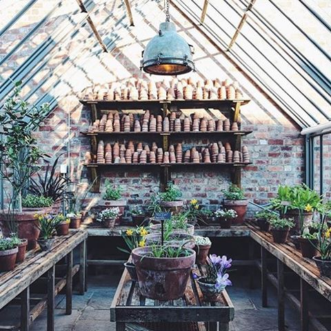 "1,756 Likes, 35 Comments - : SPROUT : London Plant Studio (@sproutlondon) on Instagram: "" potting shed of my dreams at Soho Farmhouse!  Regram from @jo_rodgers"""