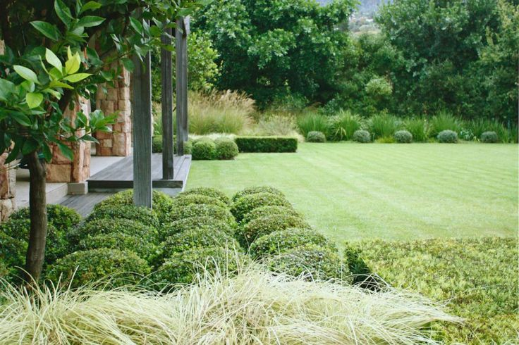 franchesca watson / graphic garden, constantia cape town Pinned to Garden Design by Darin Bradbury.