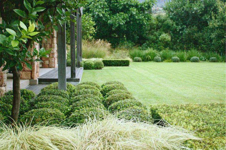 franchesca watson / graphic garden, constantia cape town