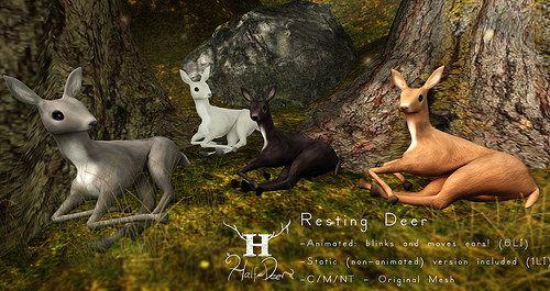 +Half-Deer+ http://maps.secondlife.com/secondlife/Farrington%20Heights/185/95/31