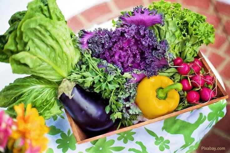 Jedzenie żywności organicznej stało się modne wśród ludzi prowadzących zdrowy…