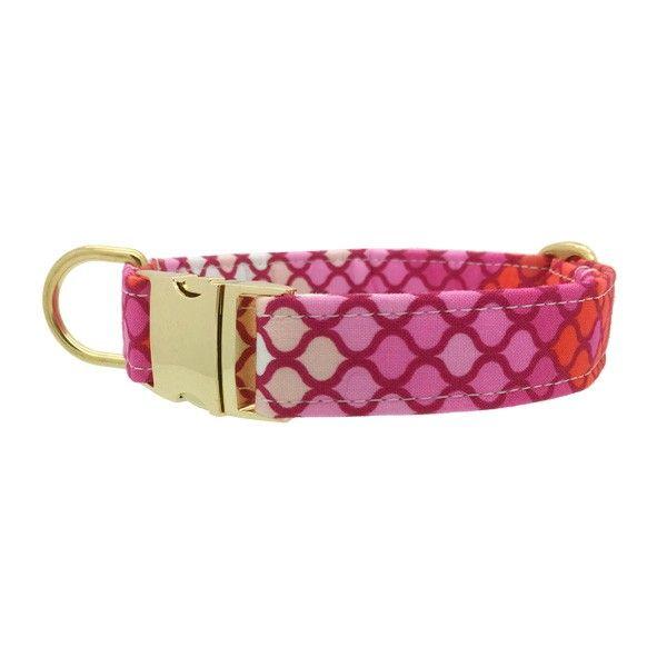 hippe halsband hond | aparte hondenhalsband | hondenwinkel