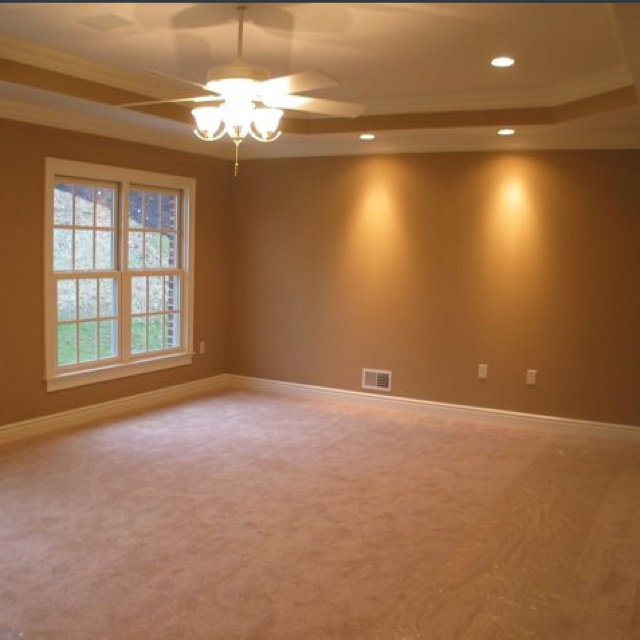 Living Room With A Trey Ceilings
