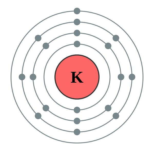 Potassium is an element with the atomic number 19 and chemical symbol K. It's atomic weight is 39.0983 u. This element is very reactive to water and is essential for life. It helps the bones and body cells.