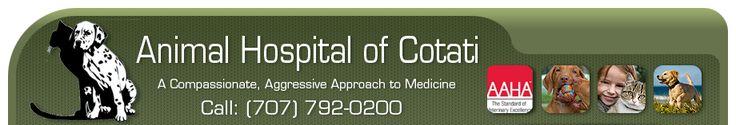 Animal Hospital Of Cotati - Veterinarian In Cotati, Santa Rosa, Rohnert Park, Petaluma, Sebastopol, Windsor, Healdsburg, Sonoma, Guerneville...