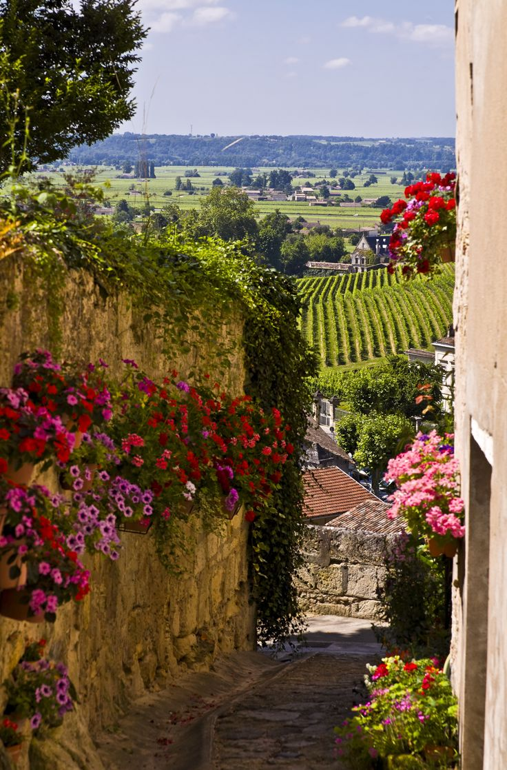 The flowers and paved path look so beautiful. Bordeaux, France