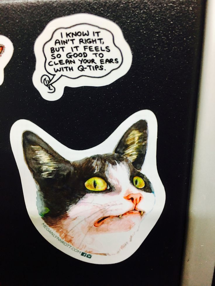 When you mash up two stickers together and the resulting humor is awesome meow